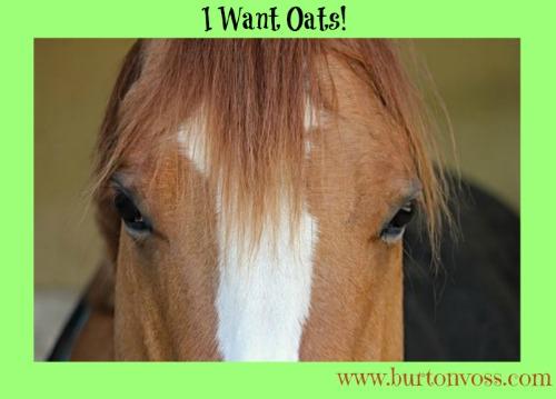 I Want Oats