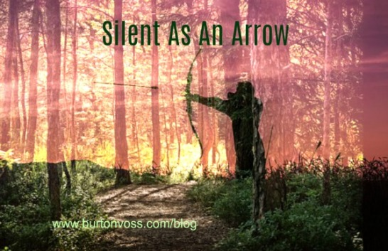 Silhouette of an Indian firing an arrow imposed over a picture of the forest.
