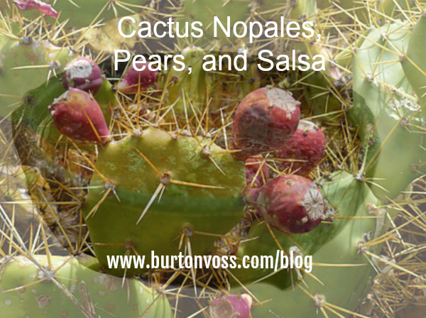 Picture of prickly pear cactus with a bowl of salsa superimposed.